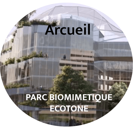économie circulaire, cradle to cradle, ressource management, éco-conception